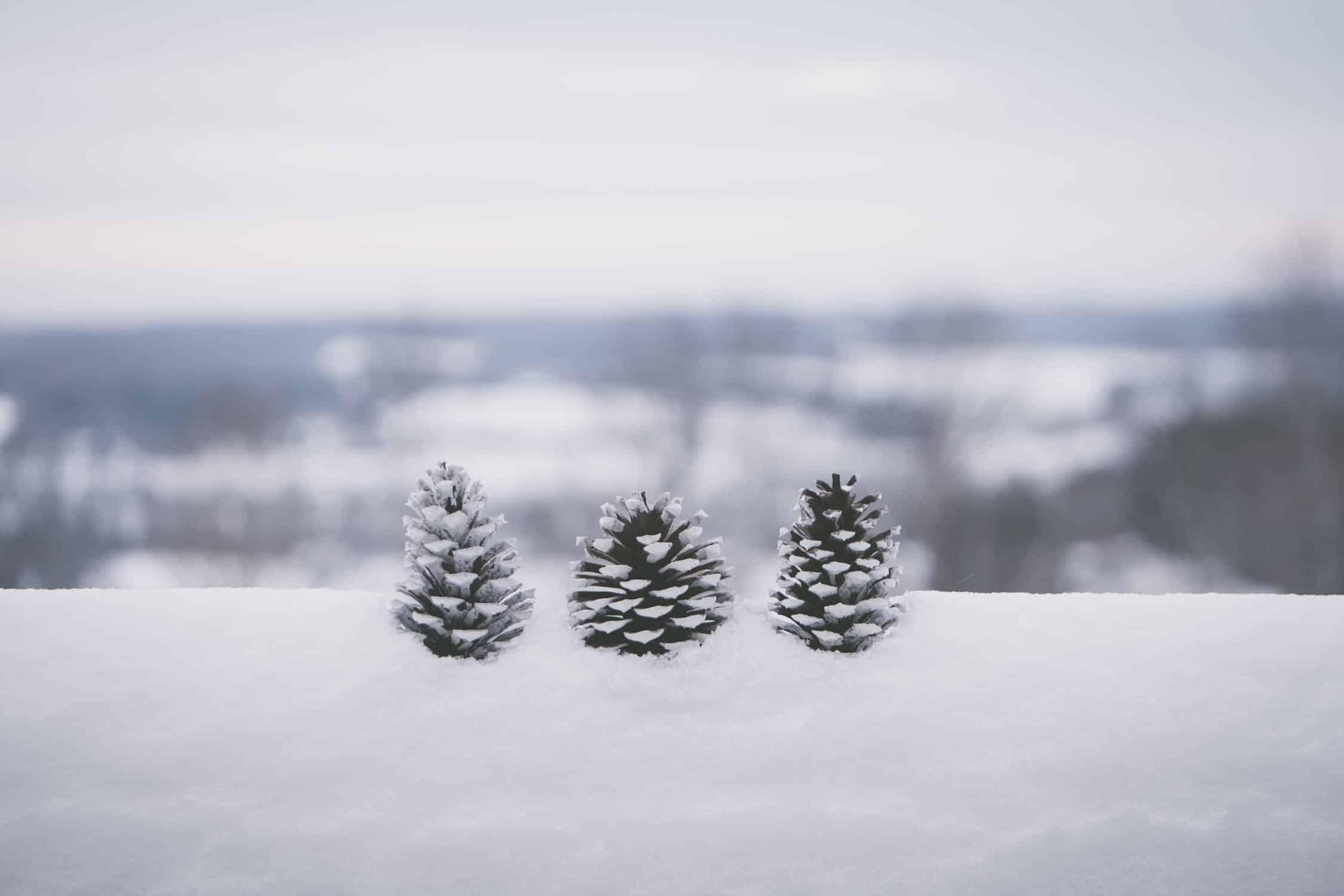 Seizoensmodellen bieden een sneak peak op het weerbericht van de maand december